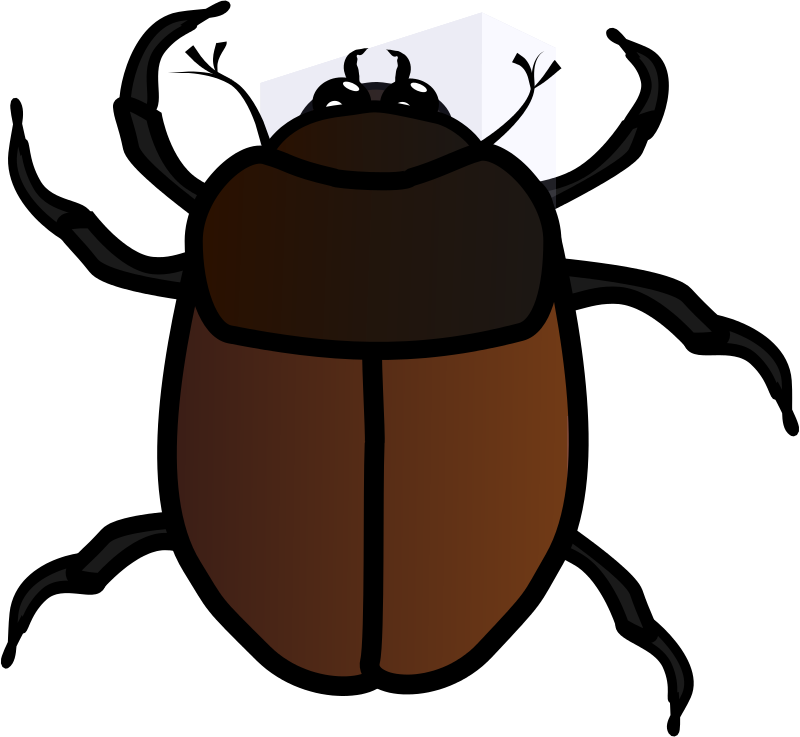 Bugs clipart beetle Free Clip  Bug Clipart