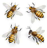 Bees clipart four Clip bees GoGraph Art Bees