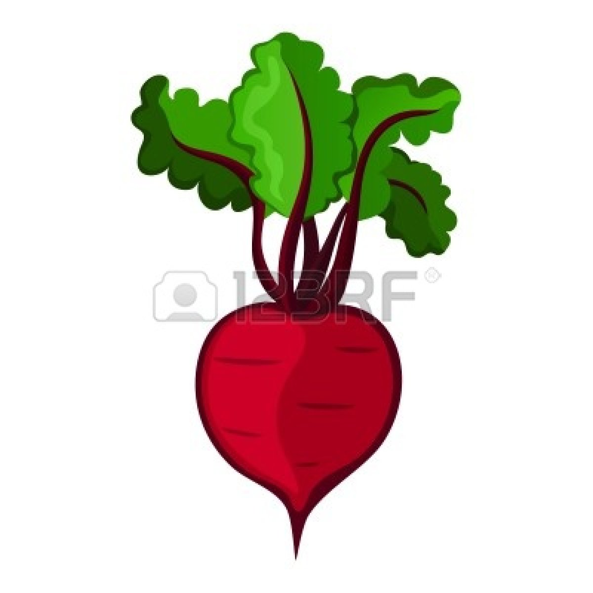 Beetroot clipart single vegetable Clipart Clipart 20clipart Panda beet%20clipart