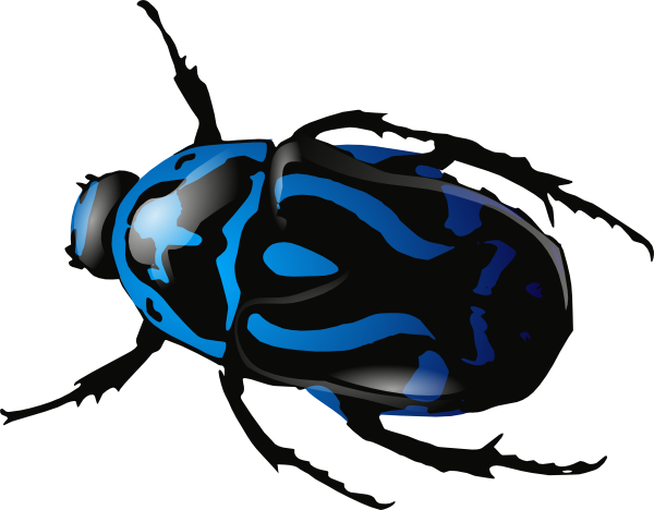 Bugs clipart blue Art Beetle Clip this at