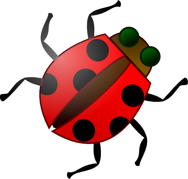 Gallery clipart insect Animation Bug Animation Clipart Bug