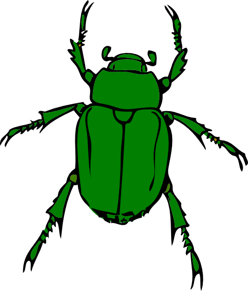 Beetle clipart bettle  vector Beetle clip as: