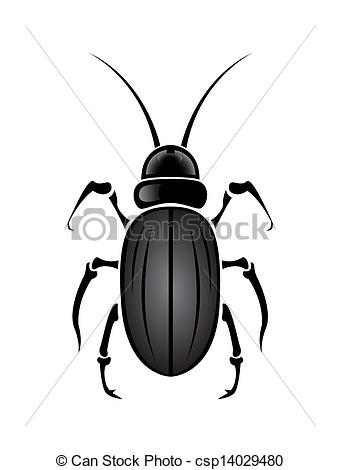Drawn beetles And  Vector On white