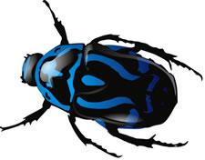 Bug clipart creepy Cliparts Art Bug  Free