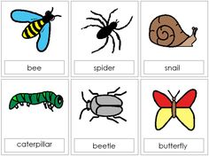 Beelte clipart minibeast Photos selection A pictures beasts