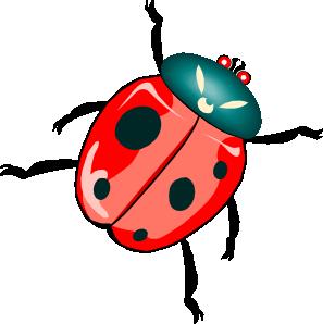 Bugs clipart beetle Clker Art royalty online Art