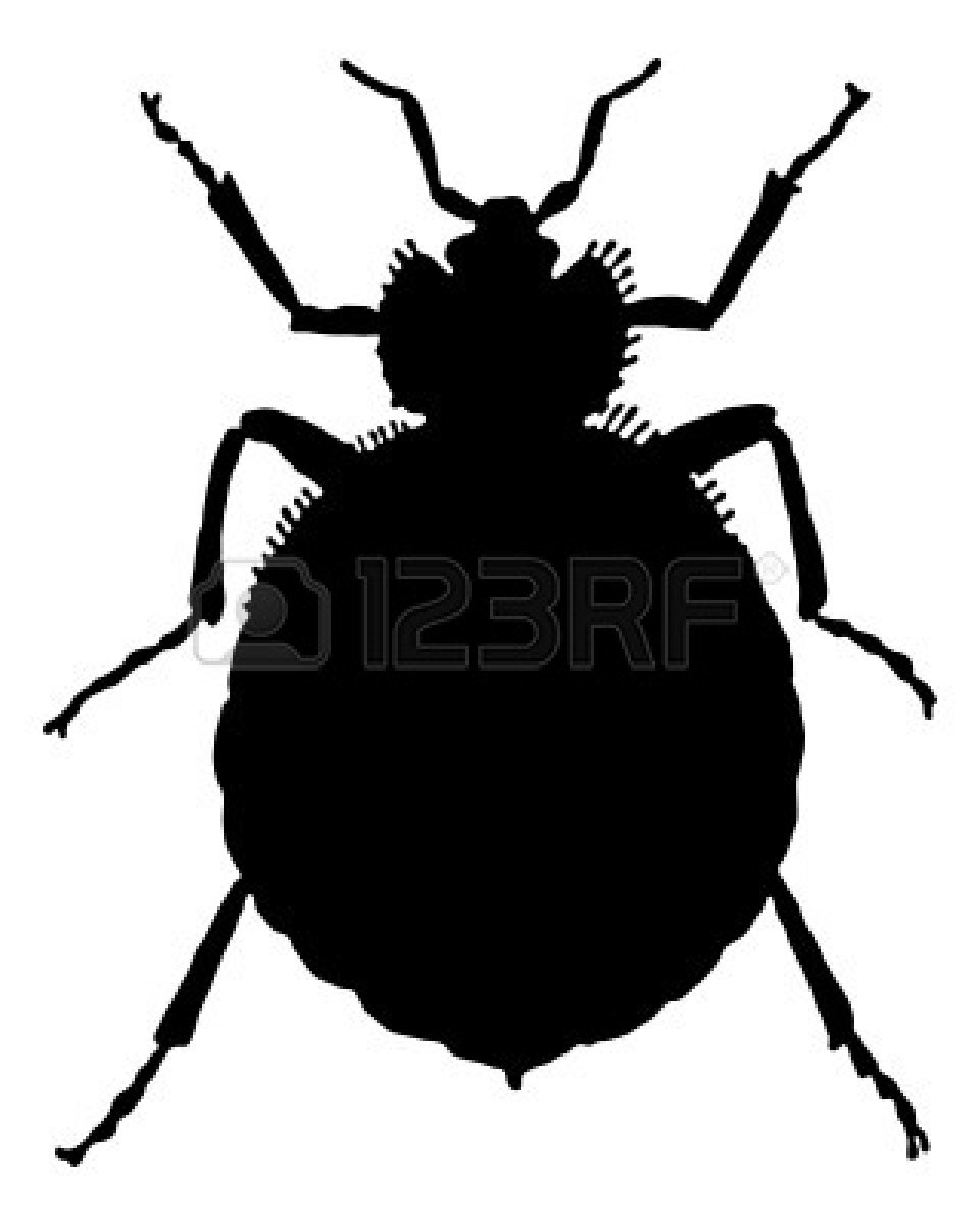 Beatle clipart silhouette Cricket%20insect%20silhouette Clipart Silhouette Free Cricket