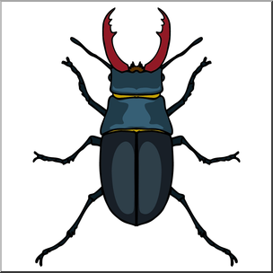 Beatle clipart staghorn Art: abcteach com Insects: Clip