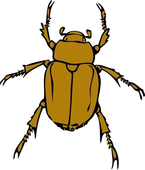 Bugs clipart beetle Vector art ( svg art