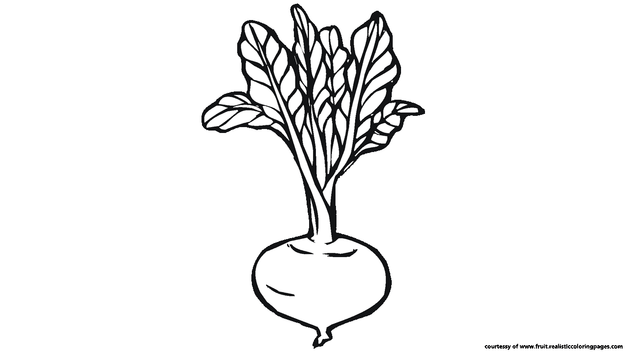 Beetroot clipart black and white Clipart white A Downloadable Astonishing