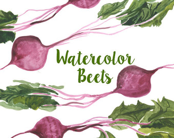 Beet clipart single vegetable Set Veggies clip Artwork Beets
