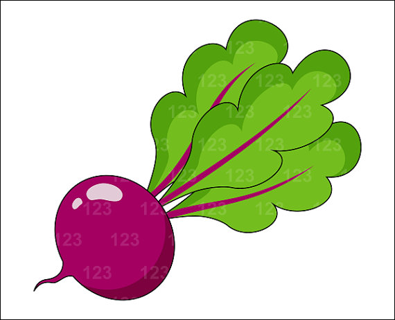 Beet clipart single vegetable Beet 1 Etsy Clip PNG