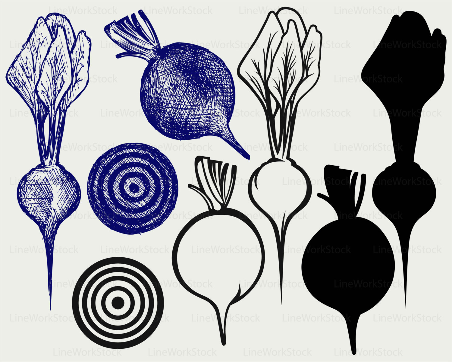 Beetroot clipart single vegetable Svg digital a beetroot file