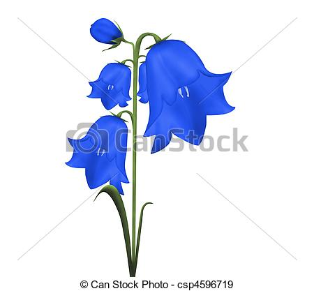 Bluebell clipart Objects of flower flower Illustration