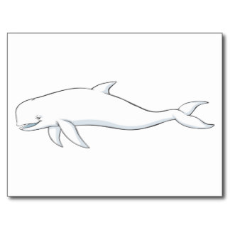 Beluga Whale clipart animated Download Beluga Whale Cartoon