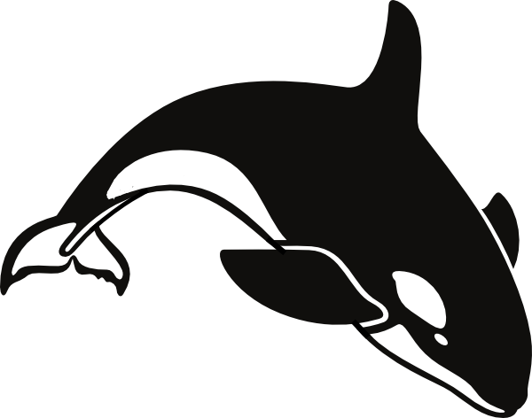 Orca clipart transparent  killer free coloring pages