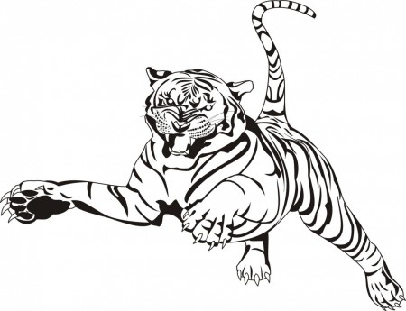 White Tiger clipart bengal tiger Tiger White #11 White coloring