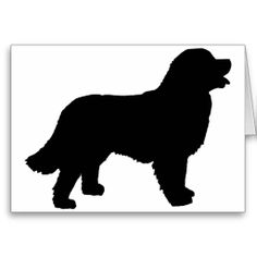 Bernese Mountain Dog clipart (black modeling with Bernese