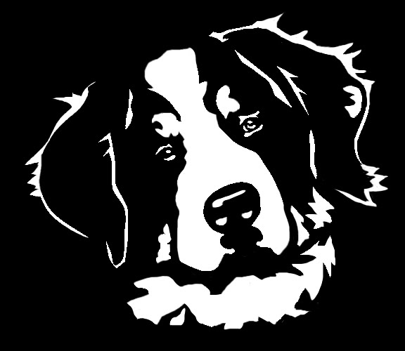 Bernese Mountain Dog clipart Svg Dog Mountain drawings svg