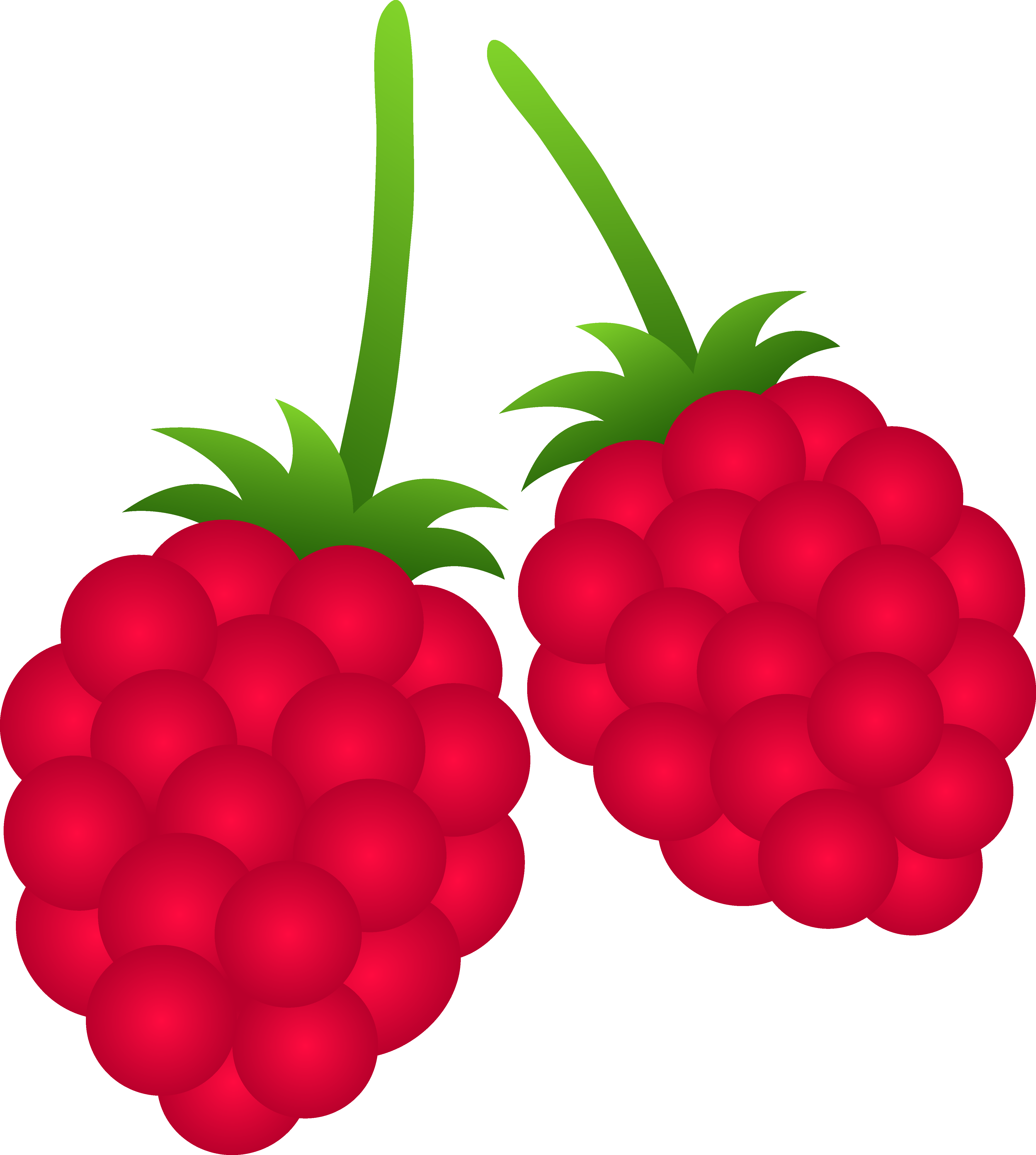Raspberry clipart vector Free Berry Clipart berry%20clipart 20clipart