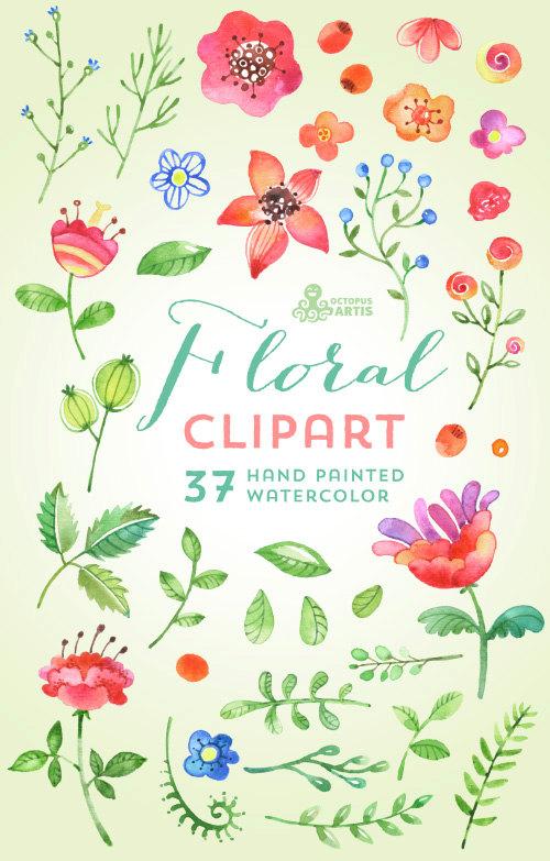 Berry clipart flower Diy berry watercolor decorative 37
