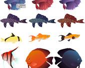 Betta clipart freshwater fish Vector catfish similar vector vector