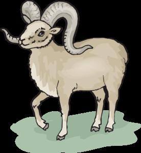 Bighorn Sheep clipart Sheep Sheep Bighorn Clip Bighorn