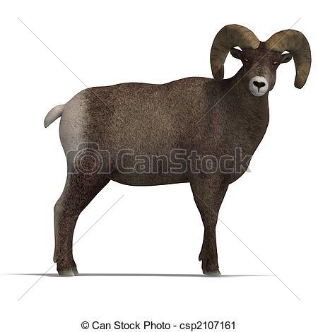 Bighorn Sheep clipart  big of Illustration big