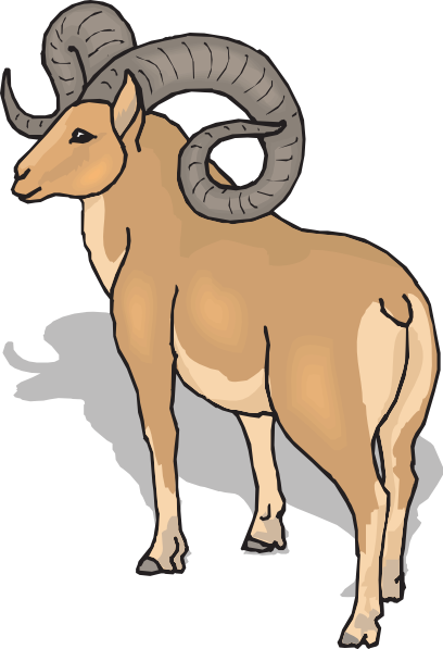 Sheep clipart ram #4