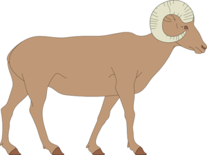 Dall Sheep clipart Download clipart Download clipart clipart