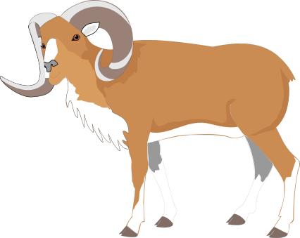 Bighorn Sheep clipart Svg Sheep Sheep svg Bighorn