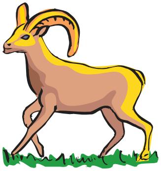 Bighorn Sheep clipart bull elk  Bighorn Sheep Sheep /animals/S/sheep/bighorn