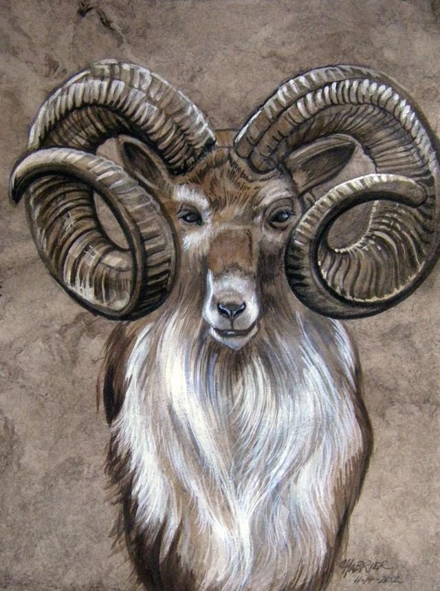 Bighorn Sheep clipart ram horn Jones (dennis1399) on Big Pinterest
