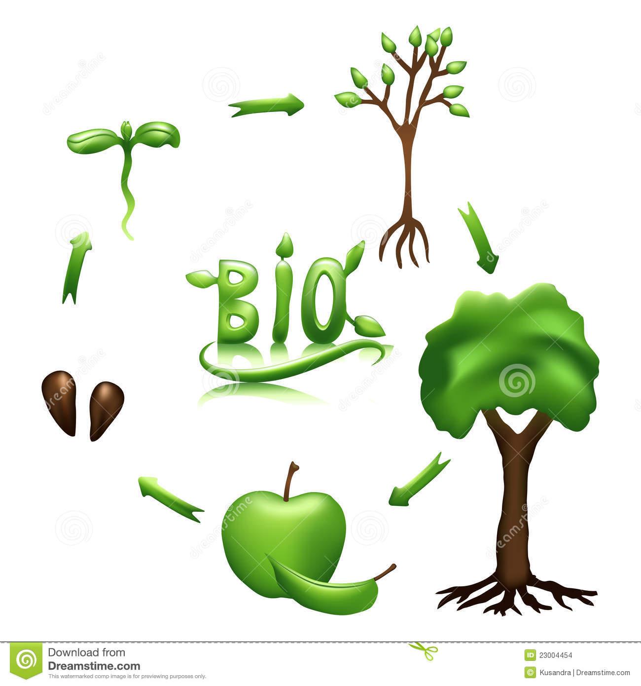 Bio clipart Apple collection Bio Life clipart
