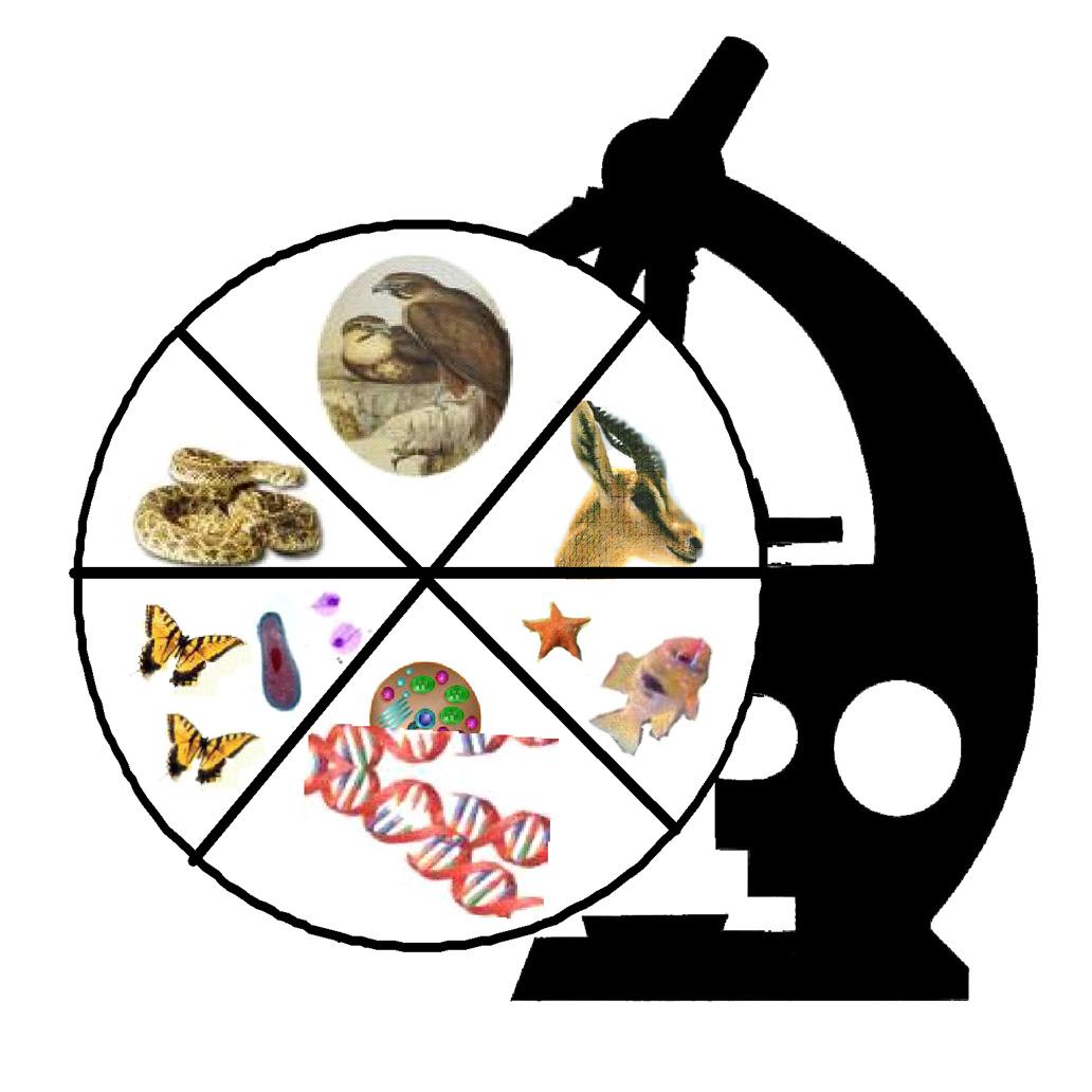 Bio clipart zoology Art Clipart Clip Degree Biology