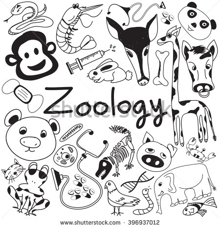 Bio clipart zoology  animal white doodle species
