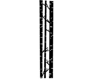Birch clipart ash tree Tree BIRCH TREE Bark~White Rubber