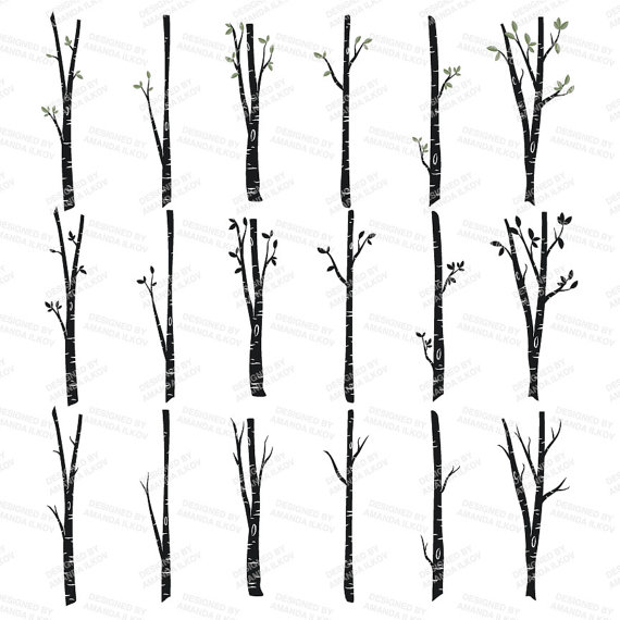 Branch clipart birch Tree & Art  ◅