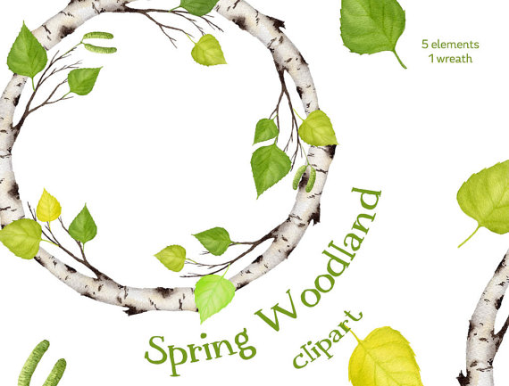 Birch clipart ash tree Birch clipart clipart Digital clipart