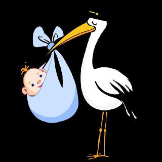 Bird clipart baby boy Baby Bird Carrying art Carrying