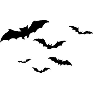 Bird clipart bat Clip Halloween Festival Collections Art