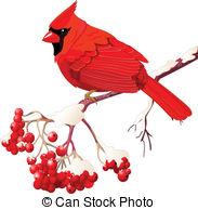Brds clipart cardinal Bird Cardinal bird sitting Red