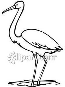 Bird clipart crane Bird Bird Crane Download Clipart