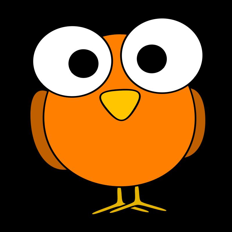 Bird clipart face Eye  Art googley Free