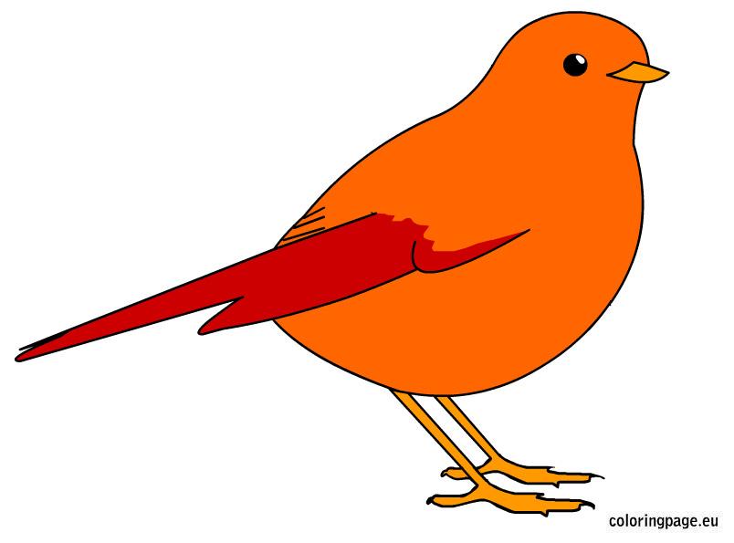 Brds clipart orange Page Bird Birds Coloring