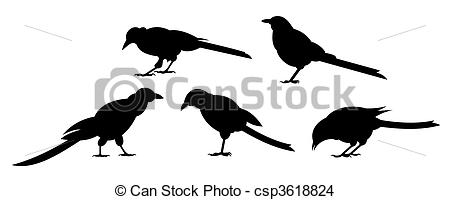 Bird clipart side view EPS csp3618824 Side view of