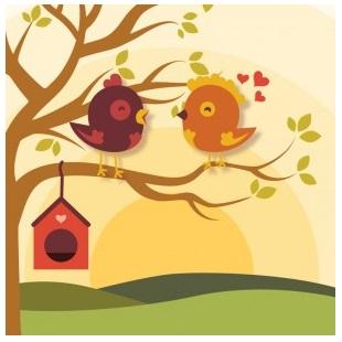 Bird House clipart bird watching 6 Bird Advice to Use