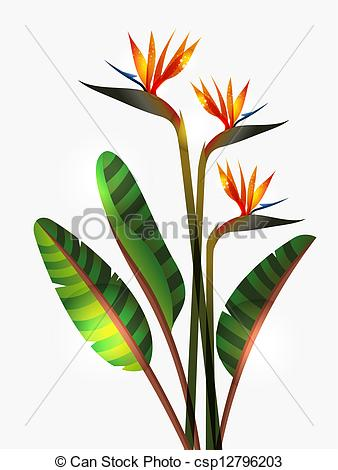 Bird Of Paradise clipart colorful bird And stem flower Bird stem