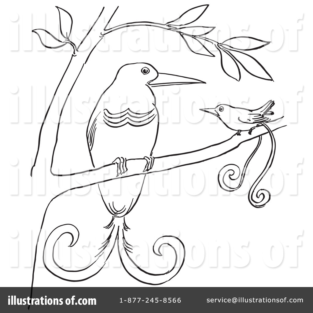 Bird Of Paradise clipart black and white Illustration Stock Bird by Picsburg