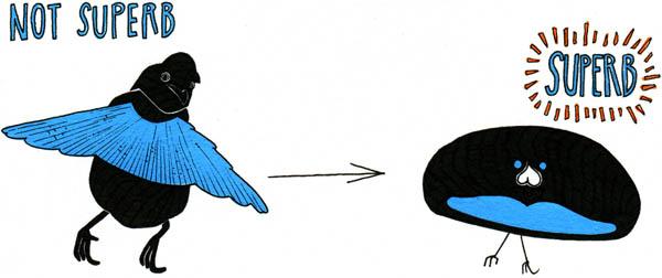 Bird Of Paradise clipart cartoon Cartoon Paradise of Superb Paradise